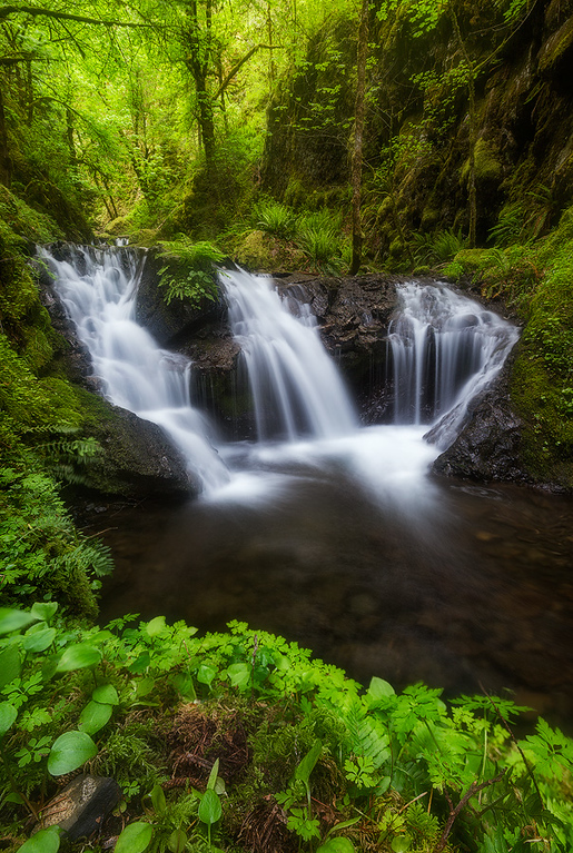 Photo of Emerald Falls in the Columbia River Gorge, Oregon