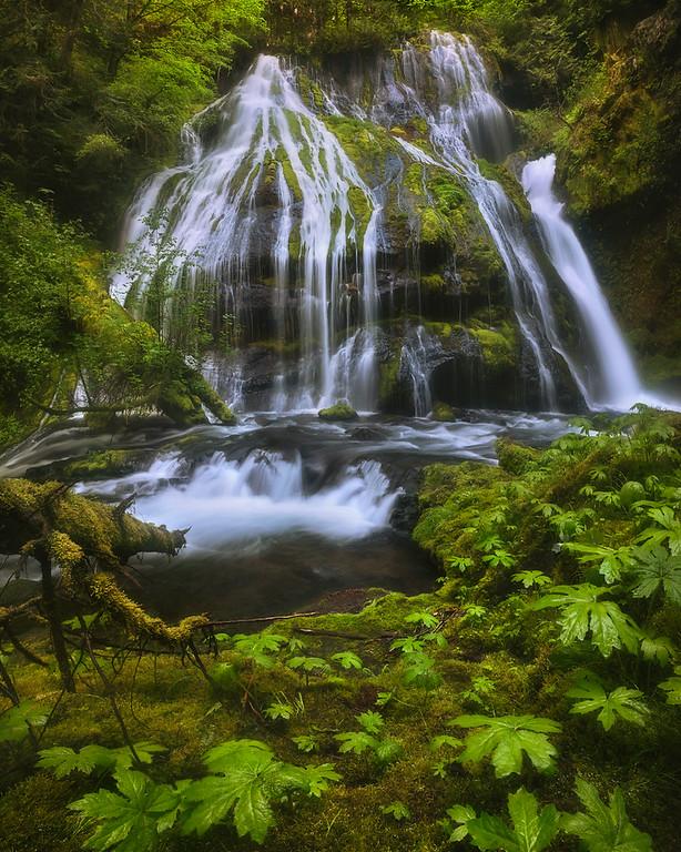 Photo of Panther Falls, Washington