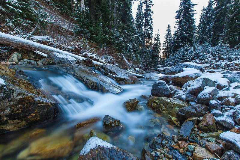 Winter Stream - Alpental, WA