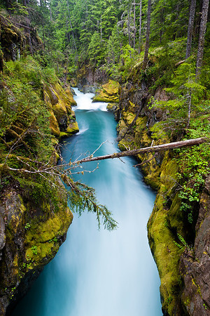 Ohanapecosh River - Mount Rainier National Park