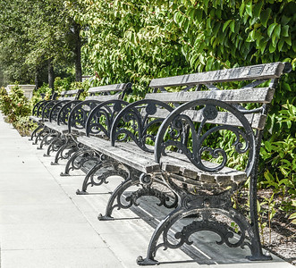 Benches (Grand Basin at Forest Park)