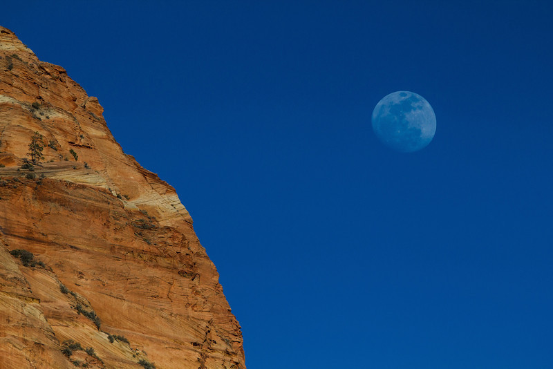 A full moon graced Zion National Park on the second night I was there.