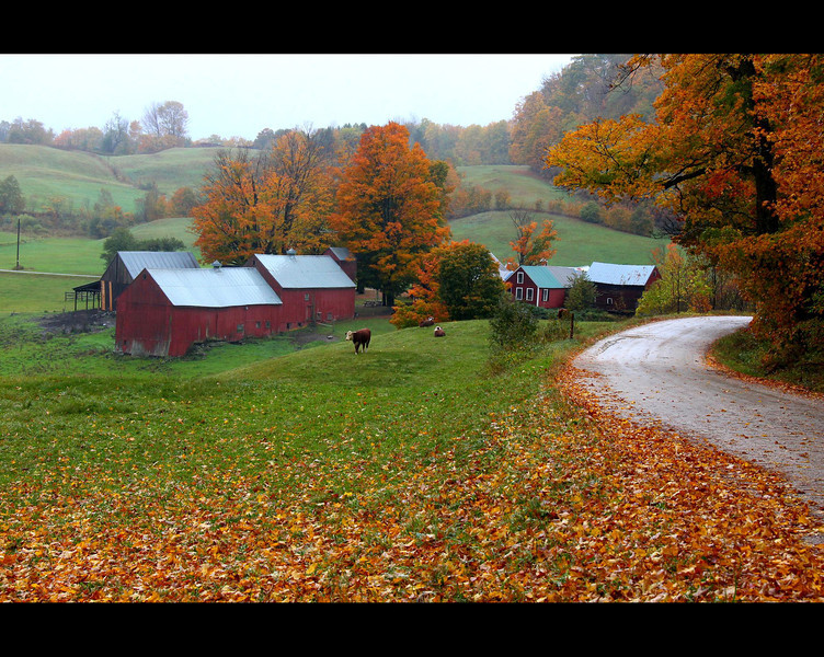 Jenne Farm, south of Woodstock, Vermont, October 5, 2010.