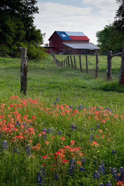 The Texas countryside in April, 2014.