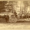 Outing in a carriage, MassachusettS, ca. 1880.  Ptgr:  Whittemore, Cottage Grove Park, MA.  MP AP