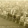 Trained animals at the Walton, NY fair, 1908.  RPPC