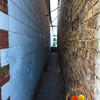 "<br><center><a href=""javascript:addCartSingle(ImageID, ImageKey)""><img src=""http://www.musicman5photos.com/photos/584931612_TXRui-S.gif"" border=""0""></a></center>  ©Music Man5 Photos"