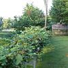 20110807_5D_49361-Edit