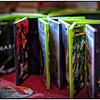 20111216_5D Mark II_56725-Edit