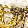 "Bass Trombone <br><center><a href=""javascript:addCartSingle(ImageID, ImageKey)""><img src=""http://www.musicman5photos.com/photos/584931612_TXRui-S.gif"" border=""0""></a></center>  ©Music Man5 Photos"
