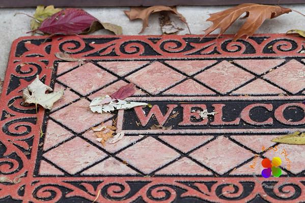 welcoming leaves (1)
