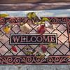 welcoming leaves (2)