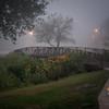 20110910_40D_51720-Edit