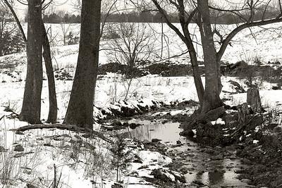 A Cold Winter's Creek