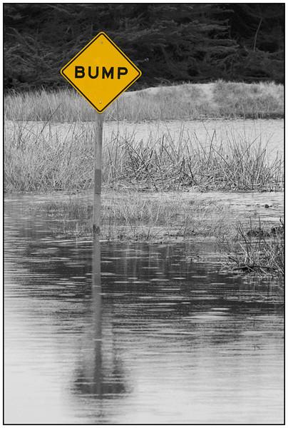 Bump B&W