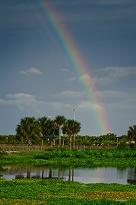 Thursday, May 17, 2012. A rainbow suddenly appears over Peaceful Waters Sanctuary in Wellington, FL.