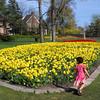 Ottawa Tulip Festival Every May