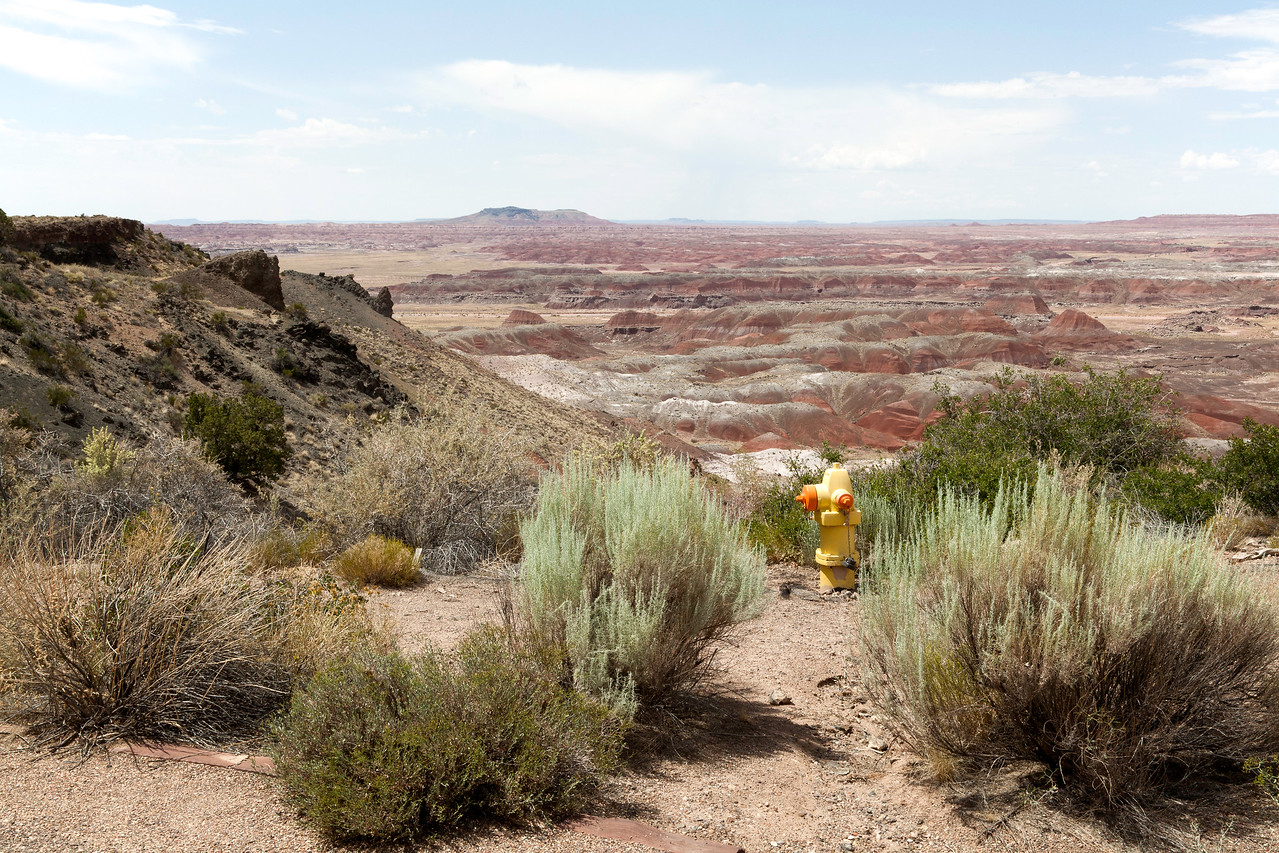 Fire Plug, Painted Desert National Park, Arizona