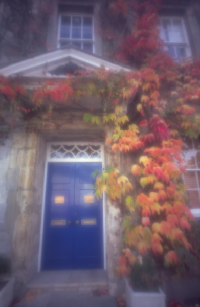 Autumn colours, Tetbury, Gloucestershire<br /> This used a zone plate for extra softness