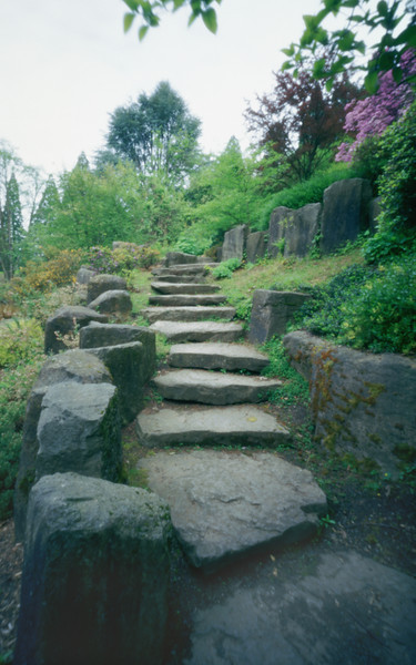 Rock stairs, Rhododendron Garden, Portland, Oregon.