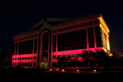 Chesapeake CIty Hall in Breast Cancer Awareness Month lighting