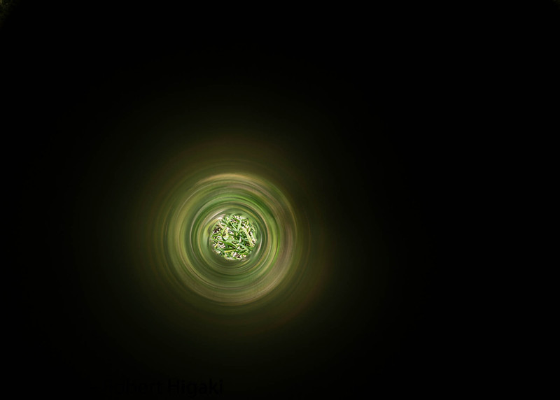 This is what I saw in the pipe; see next pic