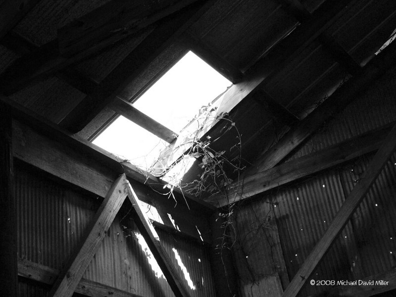 Old Barn Roof. Inside one of my uncle's hay barns. Oly E510, ZD35