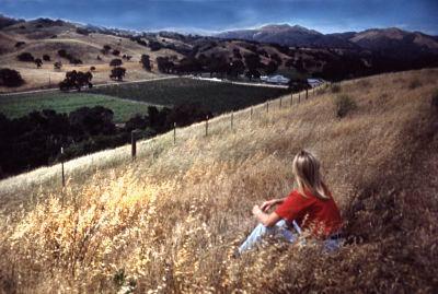 Lynne Austin overlooking the Fess Parker Vineyard/Winery