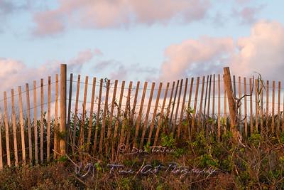 Barrier Fence Along Barrier Sand Dunes