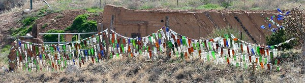 Glass bottle collection on the fence and cacti