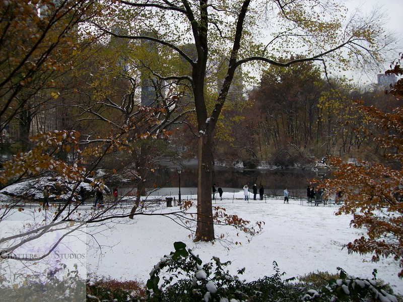 Central Park in Winter .  This Image is © Tricia Chatterton Goldrick/Chattergold Studios.  All Rights Reserved.  No duplication without permission (see commercial downloads).  This image may be purchased from this website for blogging purposes only.
