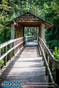 Newmans Wetland Center