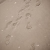 ocean city - day 1: emma's little foot prints.