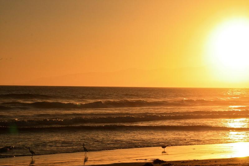 Venice Beach sunset.