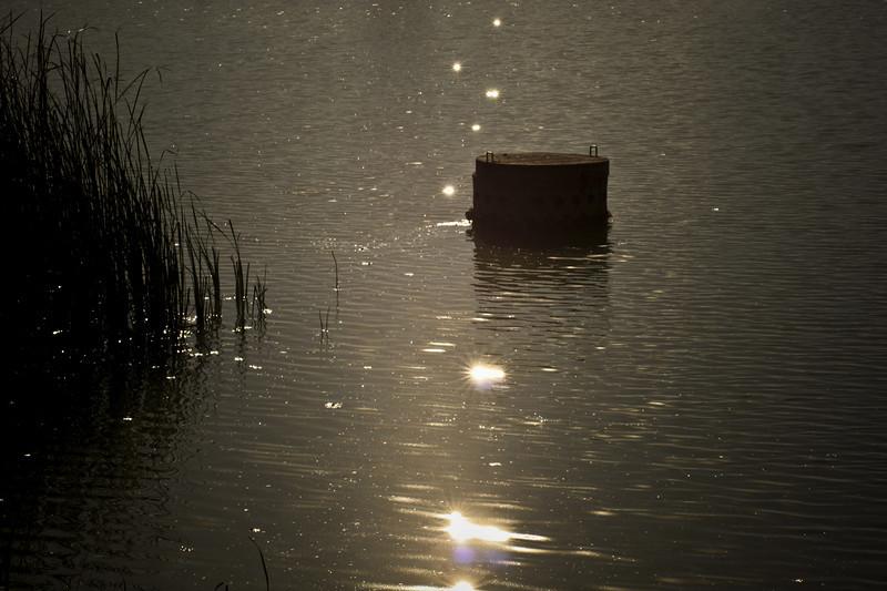 Sparkly lake.