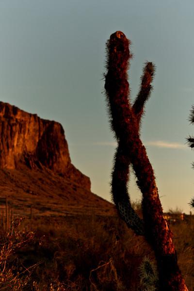 Red desert glow.