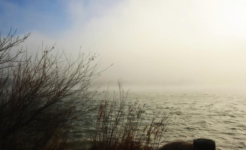 Foggy lake.
