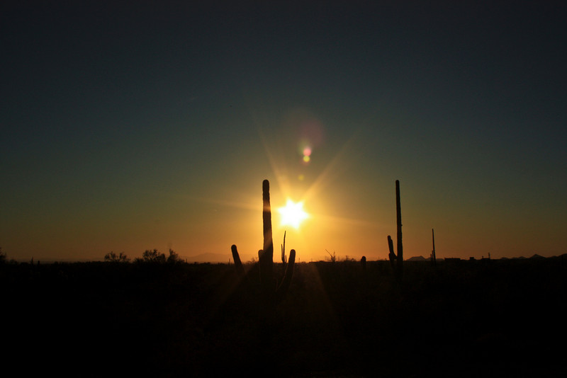 Lost Dutchman State Park, sunset.