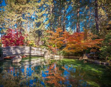 Manito Park gardens
