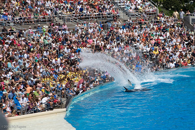 Sea_World-3459