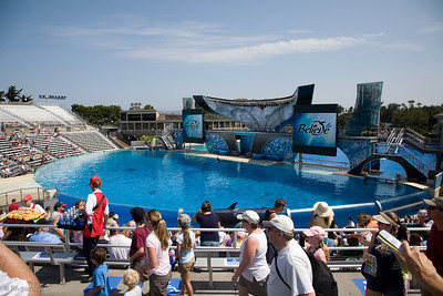 Sea_World-3416