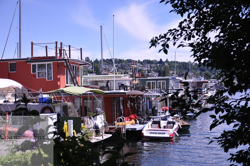Beautiful day in Seattle for the House boats .  This Image is © Tricia Chatterton Goldrick/Chattergold Studios.  All Rights Reserved.  No duplication without permission (see commercial downloads).  This image may be downloaded from this website for blogging purposes only.