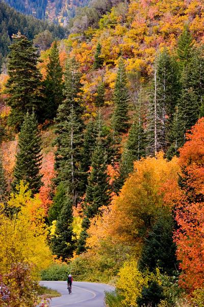 Mill Creek Canyon, Salt Lake City