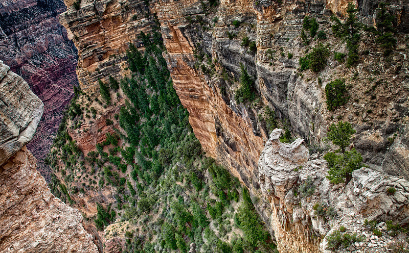Grand Canyon XVII