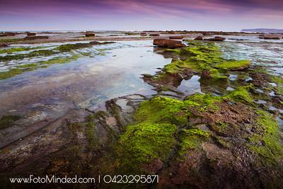 Long Reef, NSW, Australia