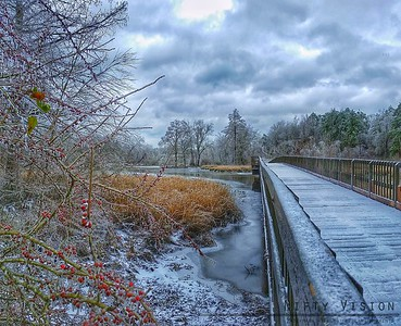 More frozen bridges and berries