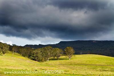 Minnamurra Rain Forest, NSW, Australia