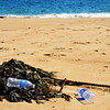Plastic Bottles on Our Beaches and in Our Ocean