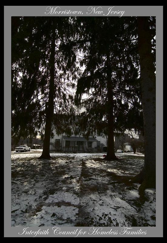 _DSC5822 House in Pines w Caption