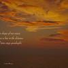 Haiku 20